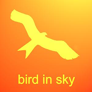 Bird in Sky logo.png